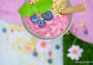 Raspberry Chia Porridge