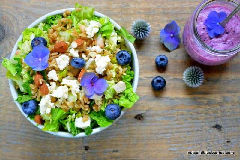 Oat salad with blueberry dressing