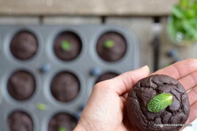 Vegan Choclate Muffins nab (2)