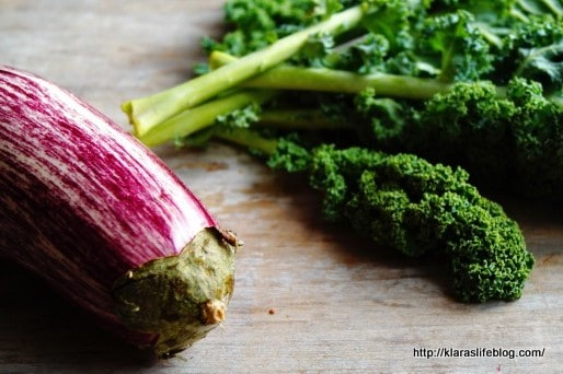 Plantbased Diet – Interview Series Part 2
