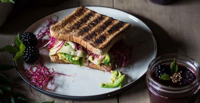 Avocado-cheese-sandwich with blackberry mustard